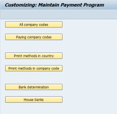 Maintain Payment Program
